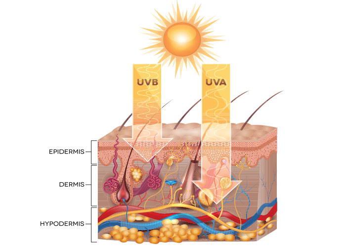 Sun Protection - Avoid Those Harmful UVA and UVB Rays